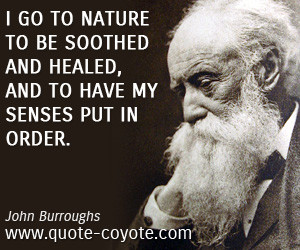 Order quotes - I go to nature to be soothed and healed, and to have my ...