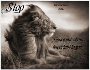 Lion Quotes Lion quotes wfm..