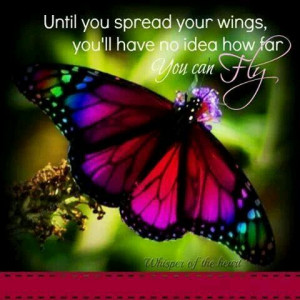 Butterfly quote #inspiring