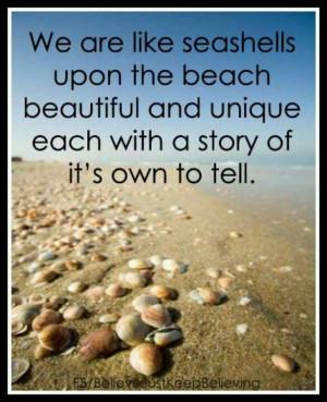 Seashells tell a unique story .....