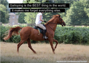 Galloping is the best feeling in the world. Hands down.