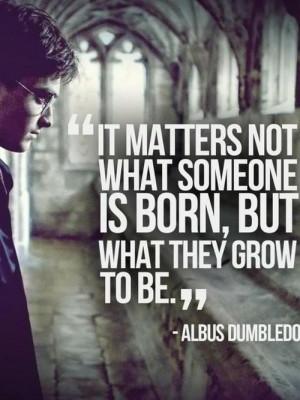 albus dumbledore, hp, love it, quotes
