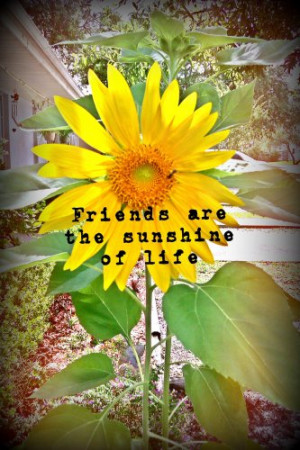 Happy Quotes About Sunflowers