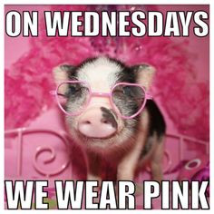 On Wednesdays we wear Pink! More