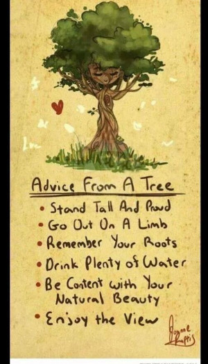 ... Remember your roots Drink plenty of water Be content with your natural