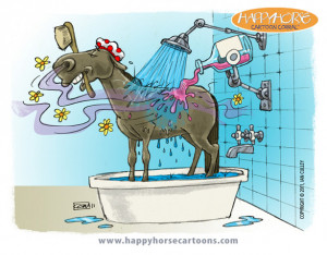 Would it be funnier if it was a gelding?