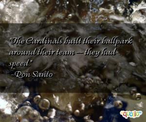 Cardinals Quotes