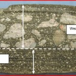 Macroscopic Examination Of Asphalt Core Sections Showing Separation