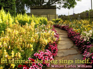 Beautiful Quotes About Summer: Summer Quotes And Sayings With The ...
