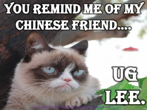 Grumpy Cat Quotes #GrumpyCat #Meme #Humor
