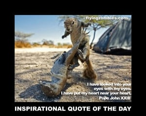 Funny Animals With Sayings 11 Desktop Wallpaper