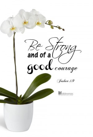 God can call you to do great things as he did with Caleb. Be strong ...