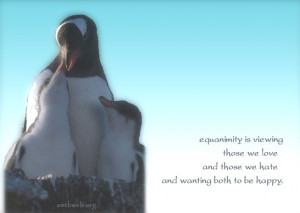 Equanimity quotes – Equanimity is viewing those we love and those we ...