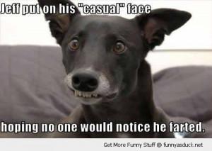 door meme supernumerary teeth scary dog teeth funny big teeth dogs