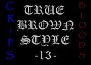 True Brown Style TBS 13 Philippines