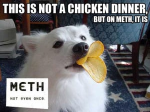 """Funny """"This Is Not Normal"""" Meth Memes (35 pics) - Picture #27"""