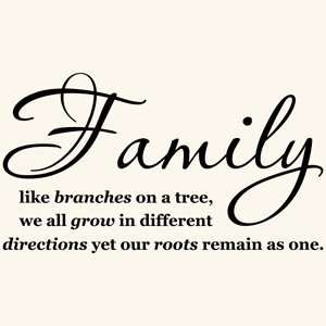 Family Get Together Quotes http://www.popscreen.com/p/MTU0ODYyNjUz ...