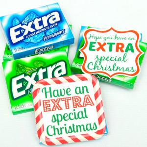 GiveExtraGum-Holiday-Gift-Idea_11.jpg