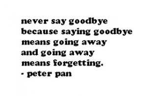 never say goodbye.. photo peterpan.jpg