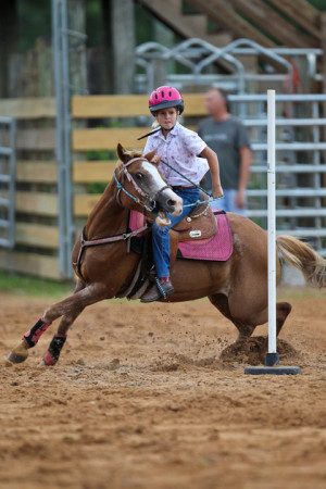 Related Pictures images funny barrel racing quotes kootation wallpaper