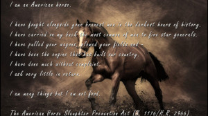 ... Horse about inhumane Horse Slaughter and our Wild Horse and Burro
