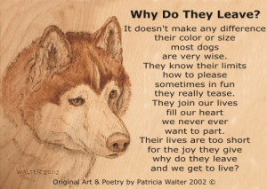 Dog Poetry 4 By Patricia