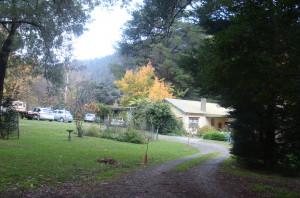 Bede Griffiths Retreat at Warburton Australia