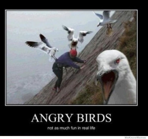 Top 20 most funny Angry birds memes and Jokes . . . #Hilarious #Funny ...