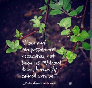 Dalai lama love and compassion quote