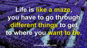 Life Quote: Life is like a maze, you have to go through different…
