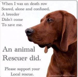 For every one you buy, a shelter dog dies... Adopt, Don't Shop!