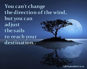 Famous quotes change You cant change the direction of the wind but you ...