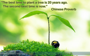Chinese Proverb inspirational wallpaper