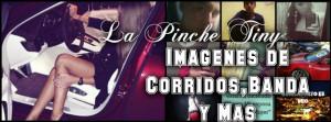 Corridos Y Banda Quotes Imagenes de corridos,banda y