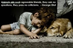 Man, Unlike The Animals Has Never Learned That The Sole Purpose In ...