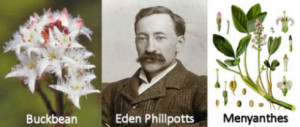 phillpotts02