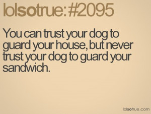 Funny Dog Quotes About Food Dog, guard, pet and