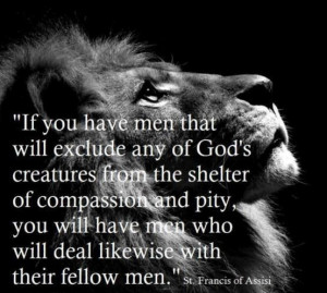 Animals are God's creatures ~ St. Francis of Assisi