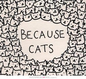 Cat Quotes Animal Quotes