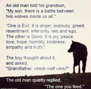 feed the right wolf # inspire # quotes
