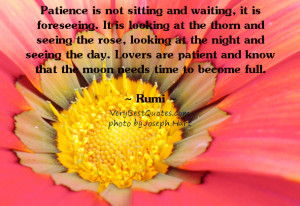 Rumi quote - Patience is not sitting and waiting