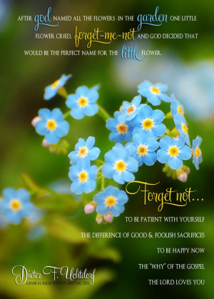 Forget Me Not Flowers Meaning | forget me not flowers | eBay ...