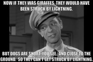 Barney Fife Andy Griffith Show
