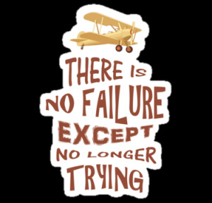 ... › Portfolio › There is no failure except no longer trying quotes