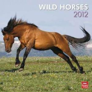 Wild Horses 2012 Wall Calendar