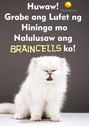 Pamatay na Banat sa mga Mabaho