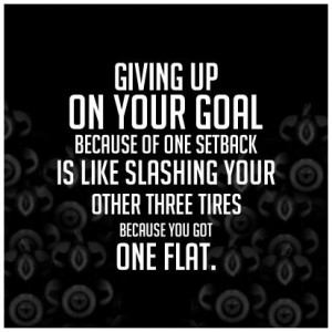 Giving Up On Your Goal Because Of One Setback Is Like Slashing Your ...