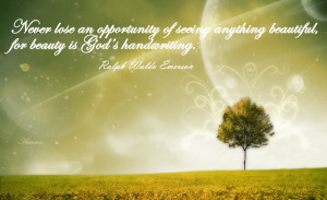 ... -of-seeing-anything-beautiful-for-beauty-is-God's-handwriting.jpg