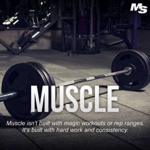 Muscle isn't built with magic workouts or rep ranges. It's built with ...