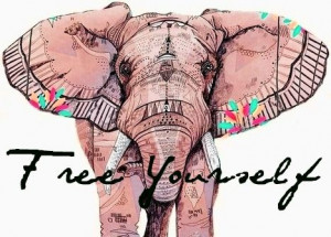 free #elephant #sayings #LifeQuotes #picturequotes #photos #pictures ...